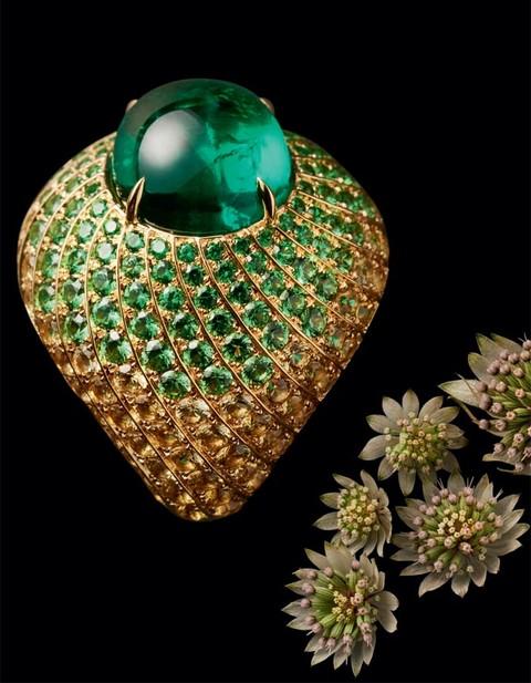 视觉盛宴 | 珠光宝气 野性之美
