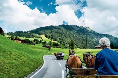 自然奢華新歐洲