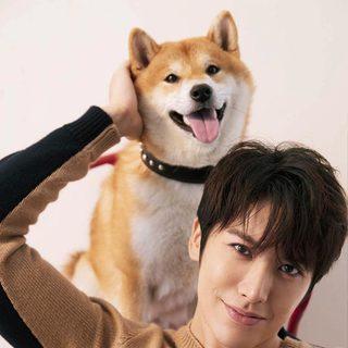 赖艺 | 超暖、超自律的犬?#30340;?#21451;